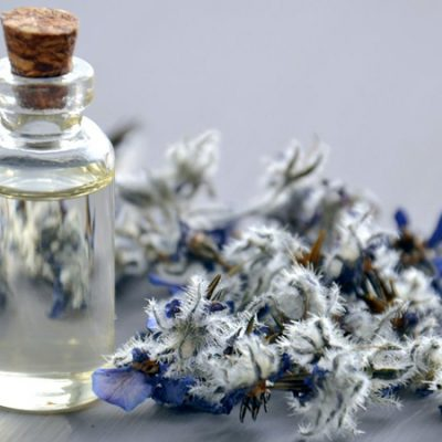Fragrance notes – A blend of Science and Creativity